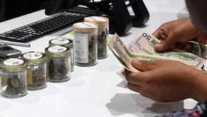 Email x1 legal cannabis make rich sale c84975b4 22b6 4b2a 9bf8 3dcd6b10eb4d