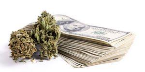 Email x1 marijuanacannabiscash