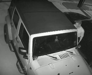 Email x1 car theft