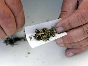 Email x1 cannabis 0