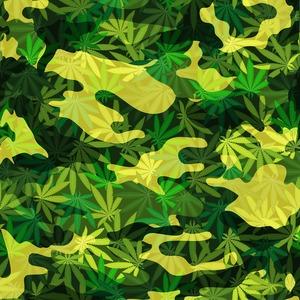 Email x1 marijuana 1509040334